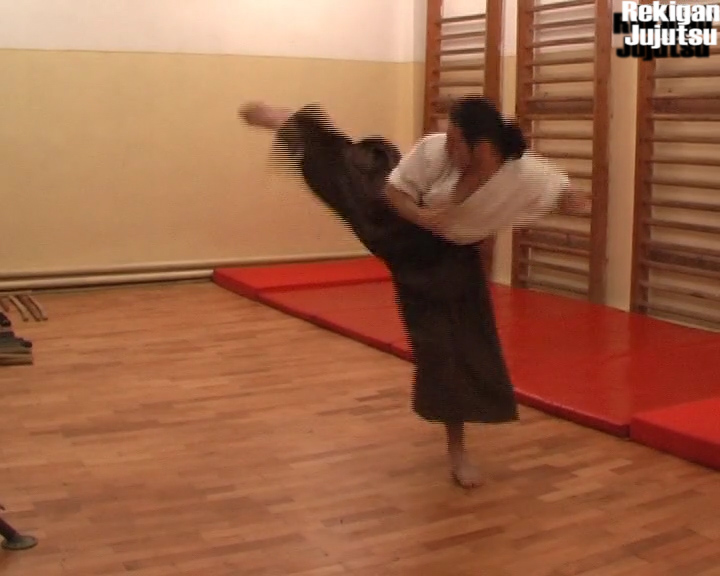 IK_5b_Ushiro_Geri